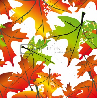 Autumn leaf seamless background. Vector