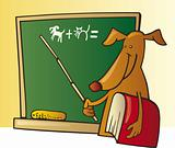 Dog teacher