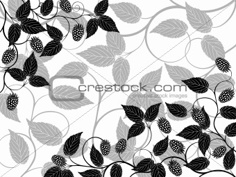Floral background with a berries. Vector illustration.