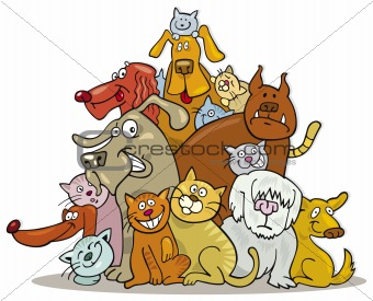 Cats and Dogs group