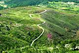 road in a beautiful green mountain landscape
