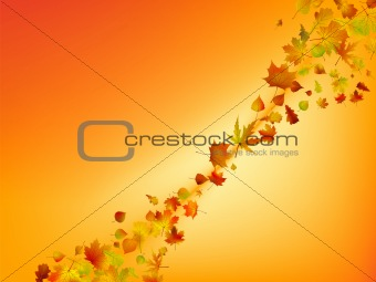 Abstract autumn background.
