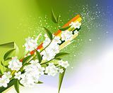 blossoms Illustration
