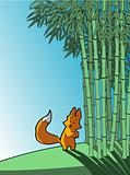 Fox in a bamboo forest
