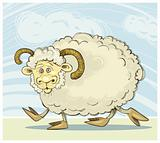 Funny ram