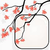 Autumnal tree background