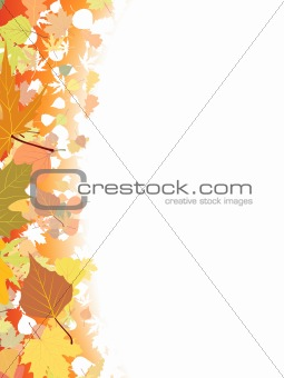Autumn background template.