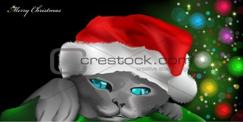 Cat with red New Year's cap. Vector illustration
