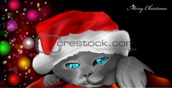 Cat with red New Year's cap. Vector