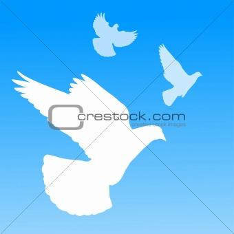 Image 2959098: White dove silhouette