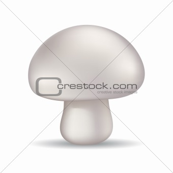 Glossy mashroom