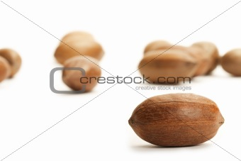 one pecan in front of others