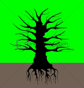 Black tree silhouette on the background