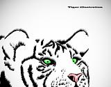 Image of tiger head with green eyes. Vector