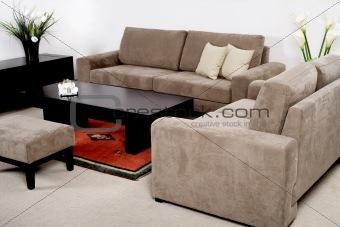 Classic furniture in a modern living room