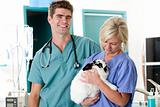 Small Animal Vet Clinic