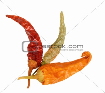 Three dry chilli-pepper