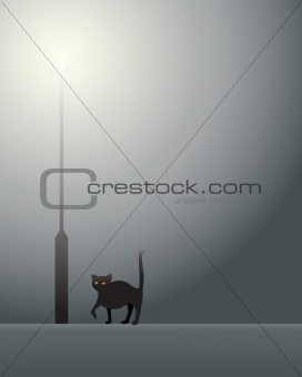black cat and lamp post