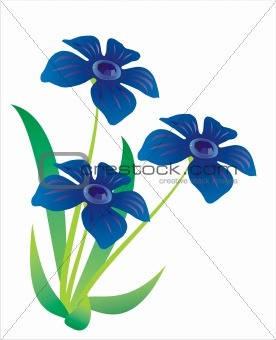 Three blue flowers