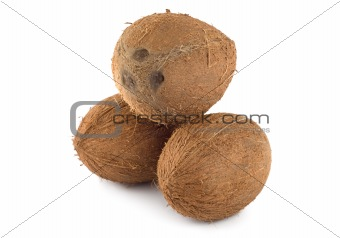 Three coconut isolated