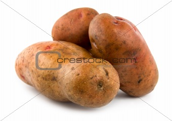 Three potatoes isolated