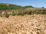 drought land in the fields of catalonia drought land in the fiel