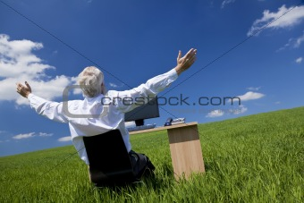 Businessman Celebrating Arms Raised At Desk In Green Field