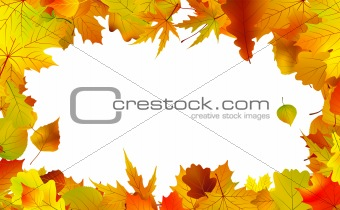Autumn leaves border for copy space.