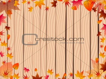 Autumn background over fence