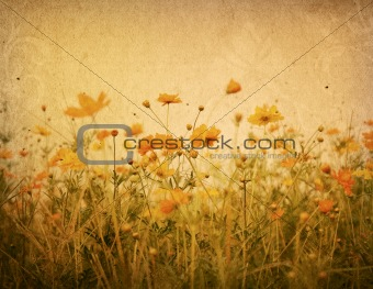 old flower paper textures