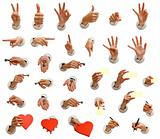 hands big collection