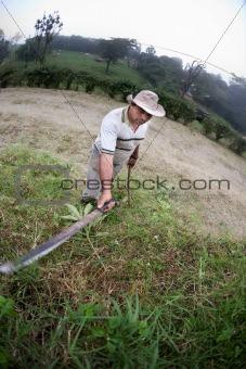 Costa Rican ranch hand