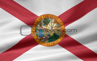 Flag of Florida - USA