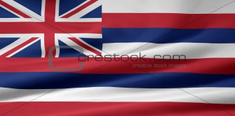 Flag of Hawaii - USA