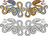 snakes tattoo design