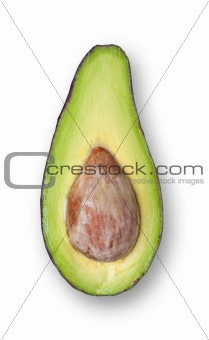 Avocado isolated.
