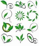 Collection of leaves for design