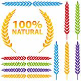 Colorful Wheat Icon Set