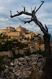 Gordes Provence Village Framed By Tree
