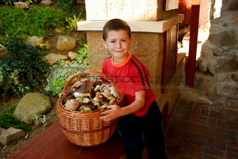 Small boy, mushroom picker