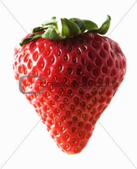 one strawberry on white background