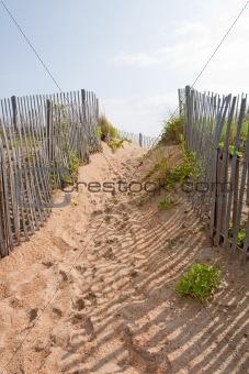 Walkway to a beach in North carolina vertical