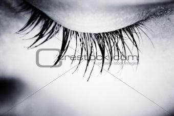 Great eye - MACRO