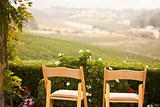 Patio Chairs and Foliage Overlooking the Country.