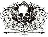 Vector Skull illustration with ornaments