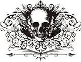 Vector Skull illustration with ornaments