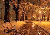 bench and shining lantern through snowing