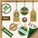 Set of ecology icons, vector