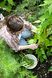 Young Woman Gardening