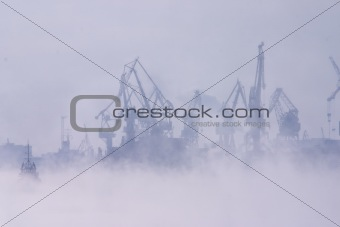 Fog over harbor